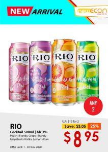 NewEcon x RIO
